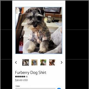 Cute dog top - size small